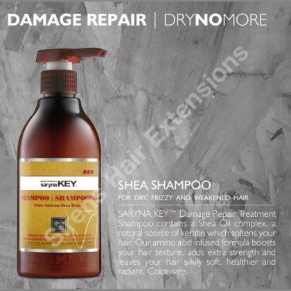 saryna key shampoo